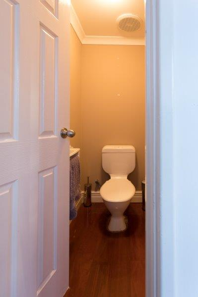 Downstairs WC - Before
